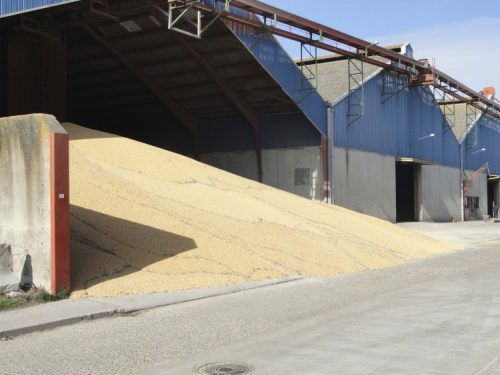 casa-riano-saldana-semillas-abonos-cereales